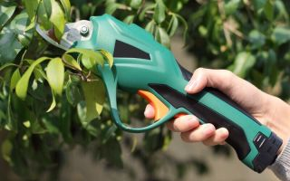 5 незаменимых инструментов, которые должны быть у каждого цветовода