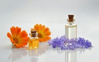 6 эфирных масел, которые полезны для комнатных растений