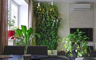 Как профессиональные дизайнеры используют домашние растения в интерьере