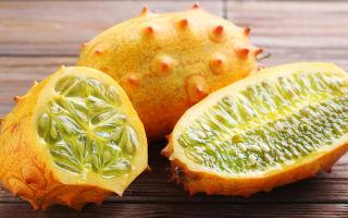 8 экзотических овощей, которые стоит посадить у себя на грядках