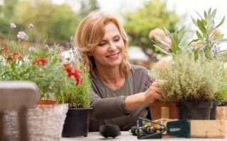 5 положительных качеств, которые можно развить, занимаясь цветоводством