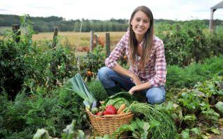Посадка в августе: 5 культур, которые дадут хороший урожай