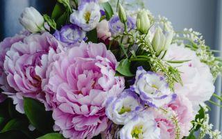 Друзья в букете: какие цветы уживаются в одной композиции