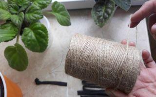 4 подходящих материала для фитильного полива ваших растений: можно забыть про лейку на пару недель