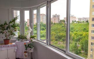 5 советов, как ухаживать за цветами на закрытой лоджии осенью и зимой