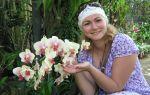 Орхидея и солнце: где лучше всего поставить горшок с цветком