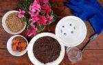 Как устроить дренаж для комнатных растений, чтобы цветы не страдали от излишней влаги