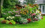 Цветы садовые