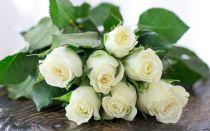 В каких случаях неуместно дарить белые розы