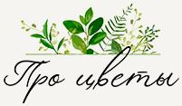 Логотип портала