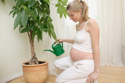 влияние на беременность