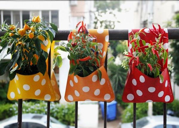 О пользе и вреде балконных овощей
