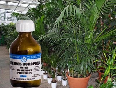 перекись для растений