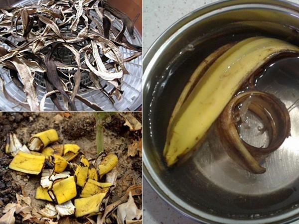 Свежая и сухая кожура банана