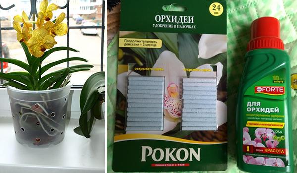 Удобрение для орхидеи