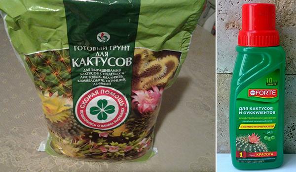 Грунт, удобрение для кактусов